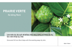 Noni-package-1