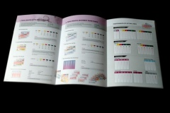 pearldent_pamphlet-4